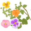植物成分 保湿化粧品